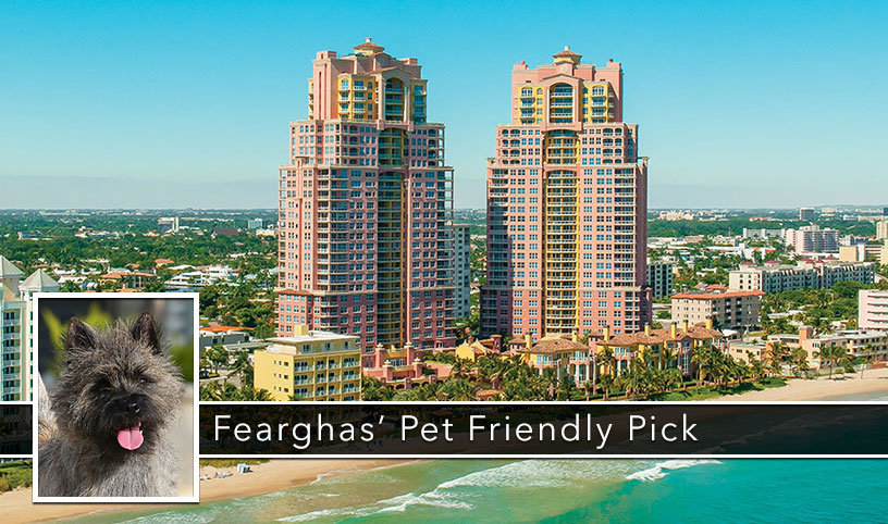 Image of The Palms, Fort Lauderdale, a Pet Friendly Oceanfront Condo.