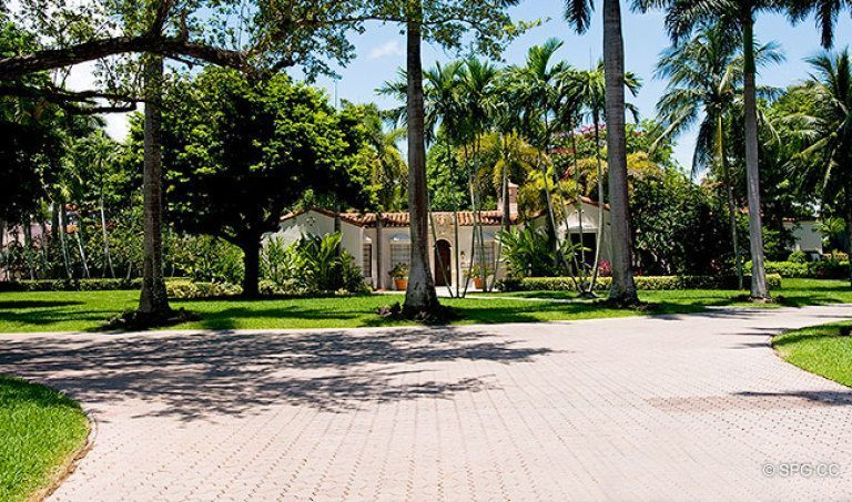 Lush Green Landscaping on Fisher Island