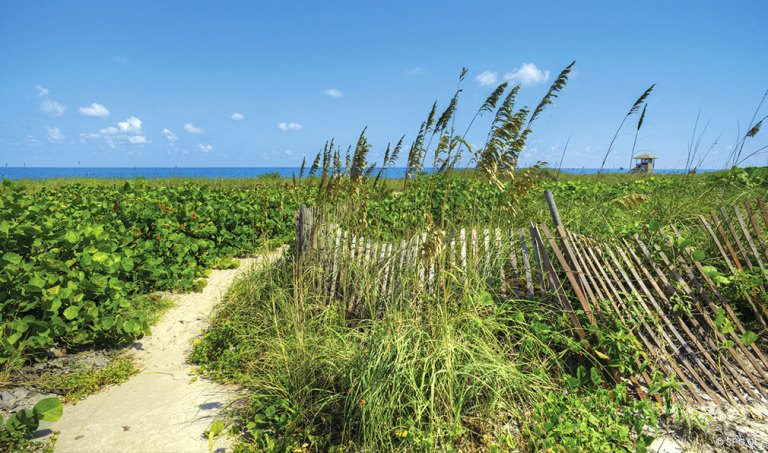 Beach Path at 4001 North Ocean, Luxury Oceanfront Condominiums Located at 4001 North Ocean Boulevard, Gulf Stream, FL 33483